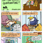 HOw are our pets getting through quarantine?